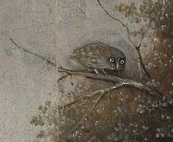 boschs owls